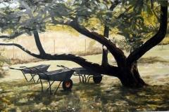 levin-apple-tree